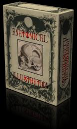 ANATOMYBOX