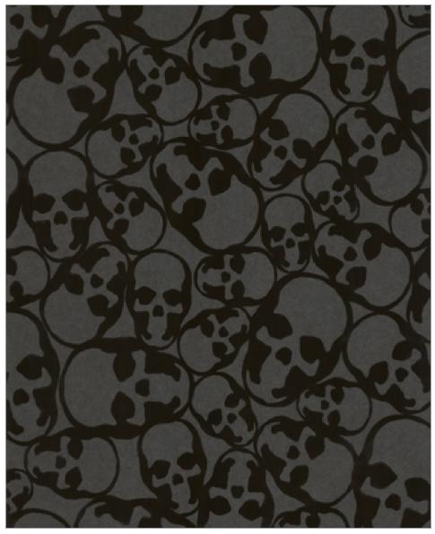 barbara hulanicki skull